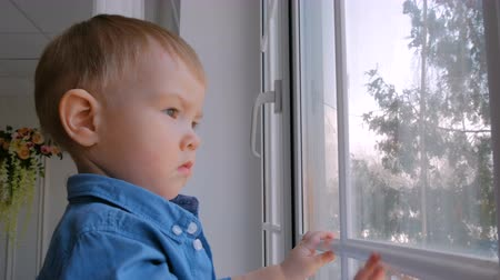 меланхолия : Pensive little boy looking through window. Childhood and leisure concept