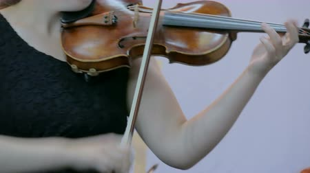 podfuk : Symphony concert - unrecognizable woman playing fiddle - close up shot. Music and culture concept Dostupné videozáznamy