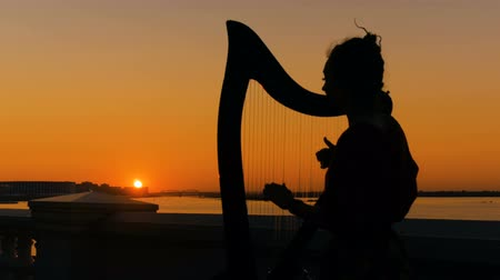 késő : Portrait of unrecognizable woman silhouette playing harp on city embankment at sunset. Music, leisure and culture concept Stock mozgókép