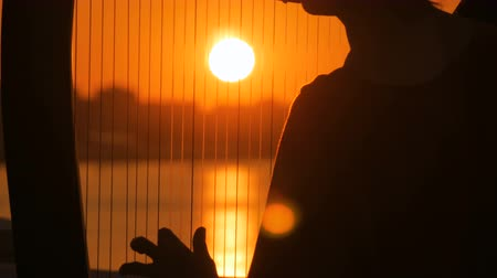 arpa : Close up shot - woman hands playing harp on city embankment at sunset. Music, leisure and culture concept