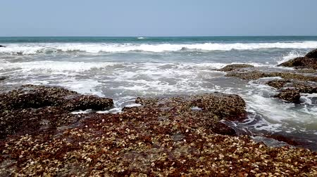 goa : Timelapse of rocky coast of the Arabian Sea. Crabs run on huge stones. Summer time.