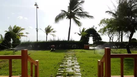 lamppost : View from the wooden terrace to the sea. Automatic watering green grass. Coconut trees pounding in the wind. Stock Footage